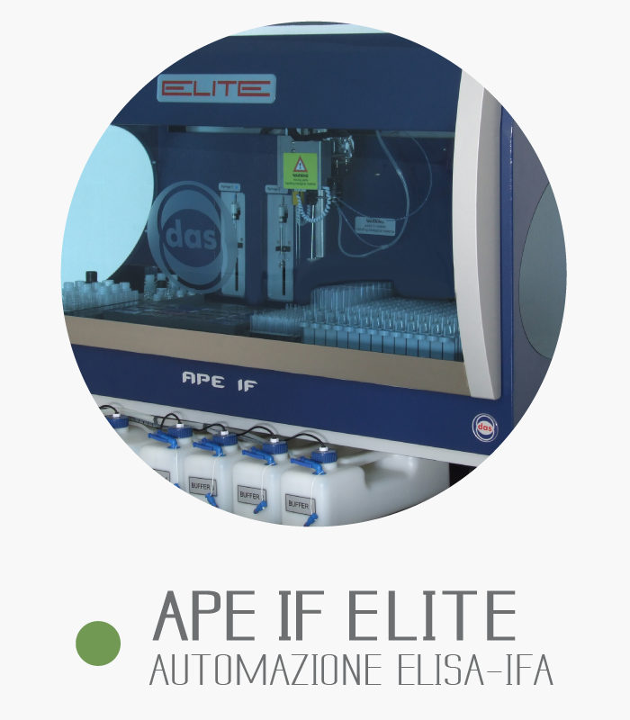 APE IF ELITE Image